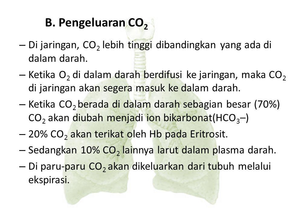 B. Pengeluaran CO2 Di jaringan, CO2 lebih tinggi dibandingkan yang ada di dalam darah.