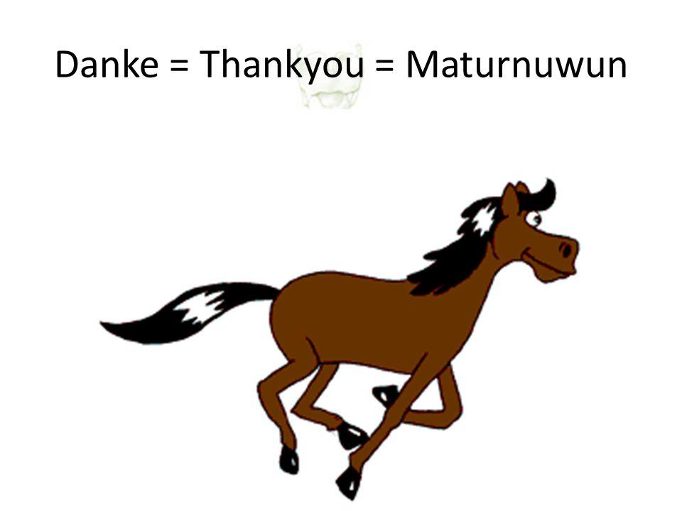 Danke = Thankyou = Maturnuwun