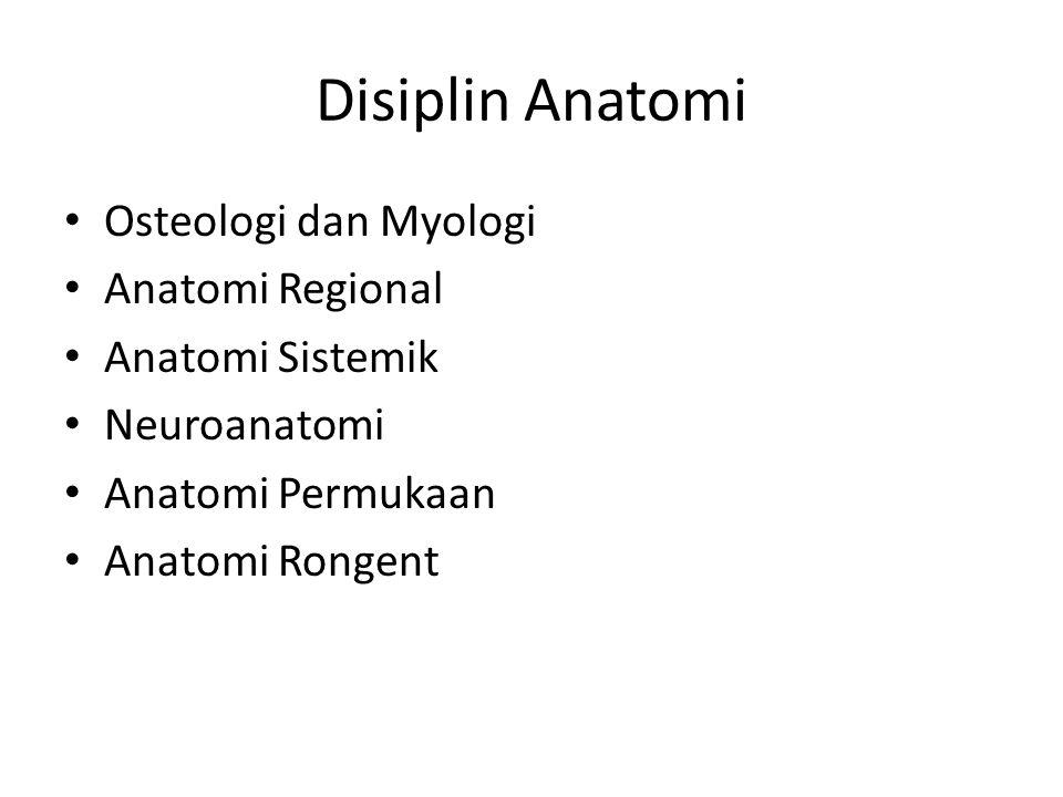 Disiplin Anatomi Osteologi dan Myologi Anatomi Regional