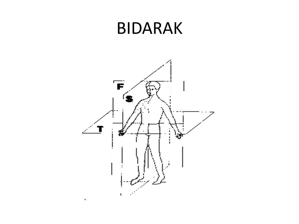 BIDARAK