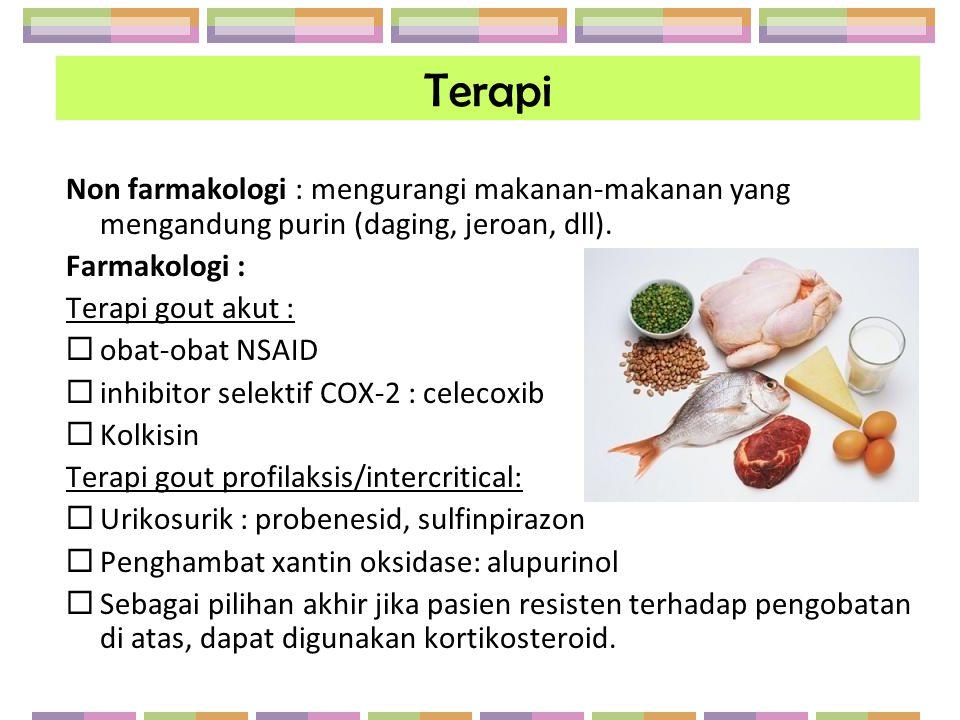 Terapi Non farmakologi : mengurangi makanan-makanan yang mengandung purin (daging, jeroan, dll). Farmakologi :