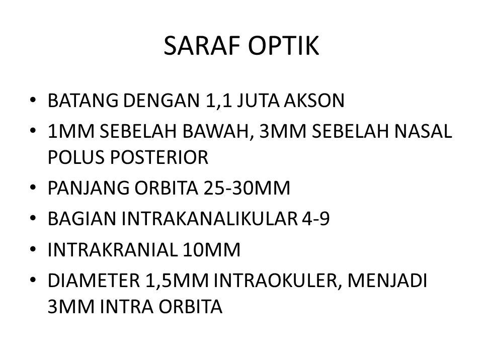 SARAF OPTIK BATANG DENGAN 1,1 JUTA AKSON