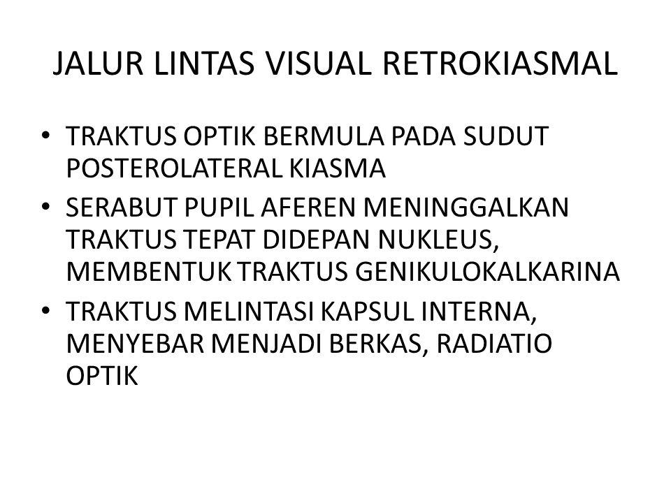 JALUR LINTAS VISUAL RETROKIASMAL