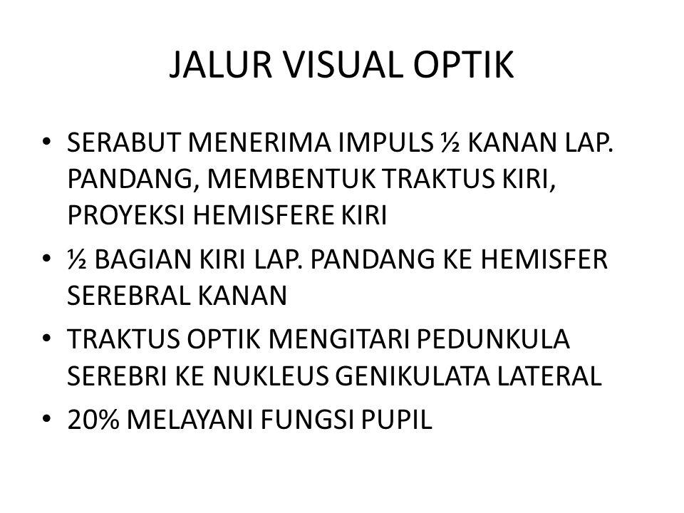 JALUR VISUAL OPTIK SERABUT MENERIMA IMPULS ½ KANAN LAP. PANDANG, MEMBENTUK TRAKTUS KIRI, PROYEKSI HEMISFERE KIRI.
