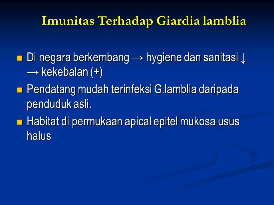 Imunitas Terhadap Giardia lamblia