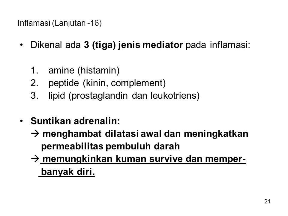 Inflamasi (Lanjutan -16)