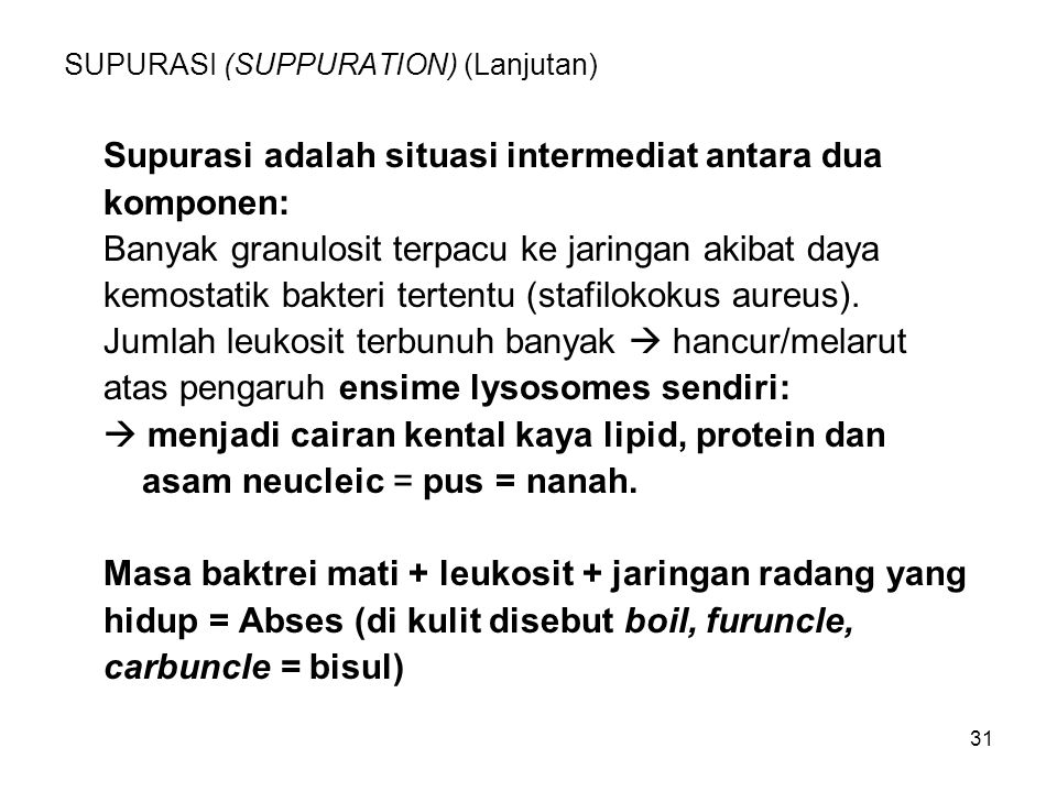 SUPURASI (SUPPURATION) (Lanjutan)