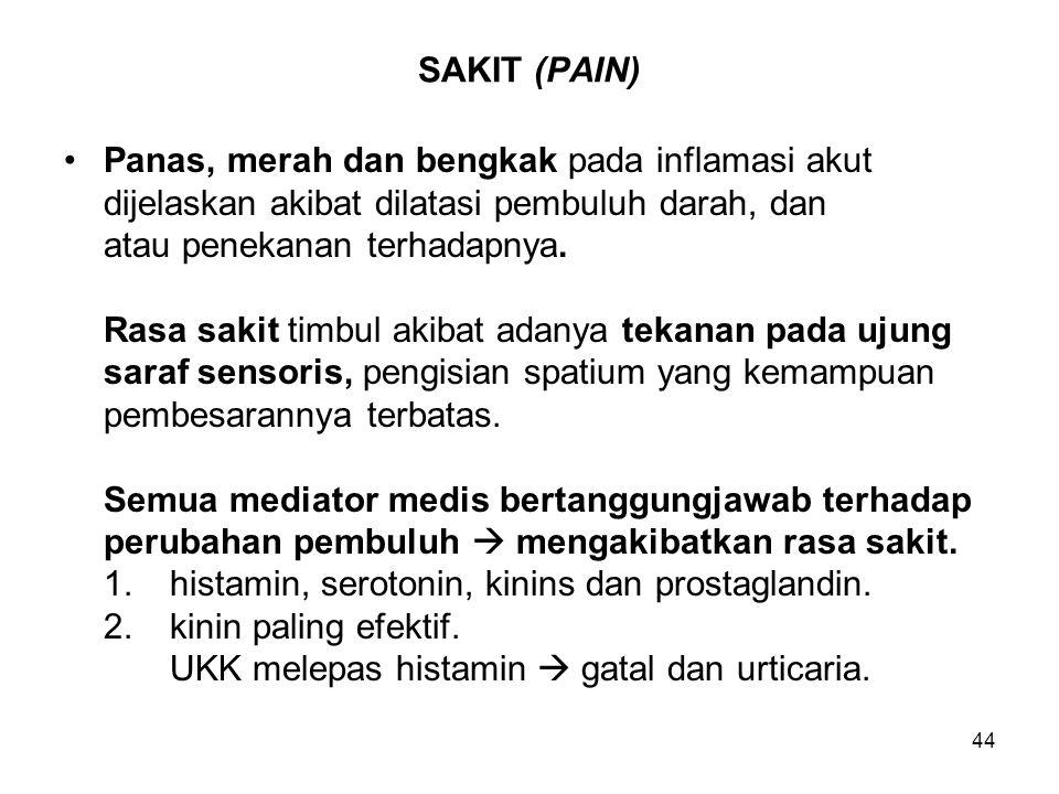 SAKIT (PAIN) Panas, merah dan bengkak pada inflamasi akut. dijelaskan akibat dilatasi pembuluh darah, dan.