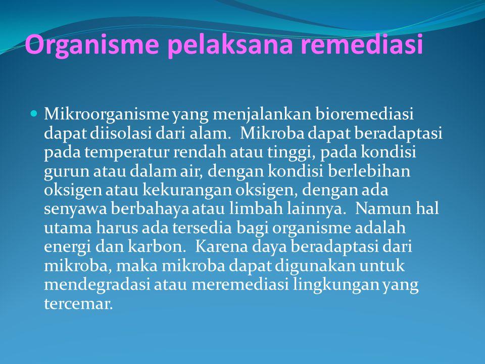 Organisme pelaksana remediasi