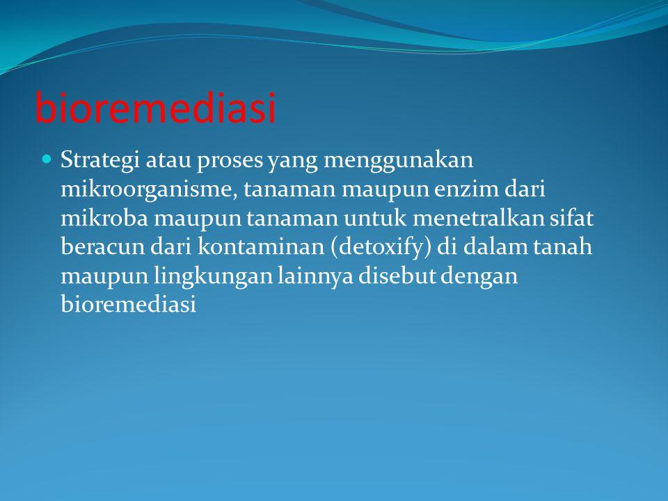 bioremediasi