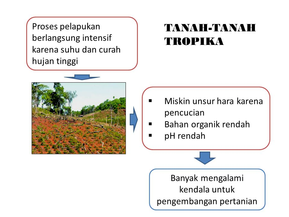 Banyak mengalami kendala untuk pengembangan pertanian