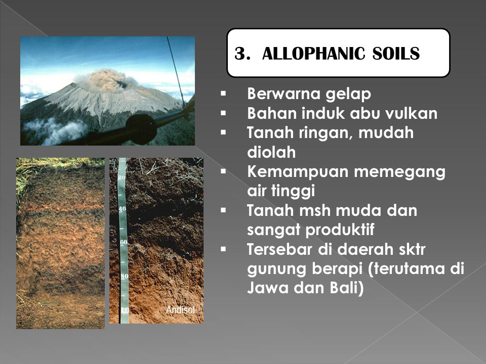 3. ALLOPHANIC SOILS Berwarna gelap Bahan induk abu vulkan