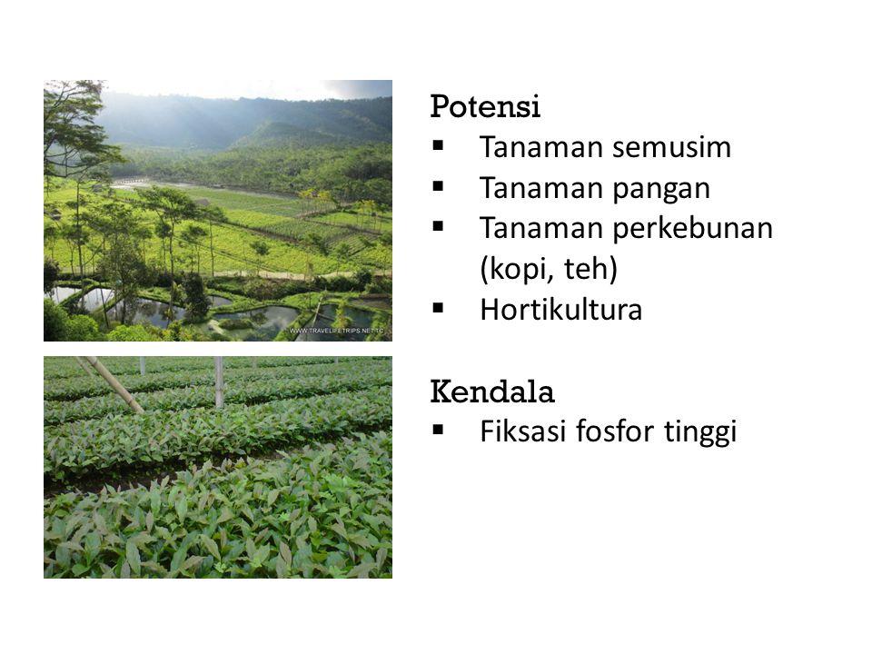 Potensi Tanaman semusim. Tanaman pangan. Tanaman perkebunan (kopi, teh) Hortikultura.