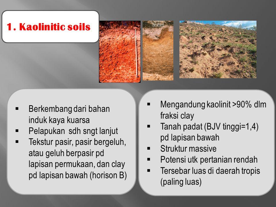 1. Kaolinitic soils Mengandung kaolinit >90% dlm fraksi clay
