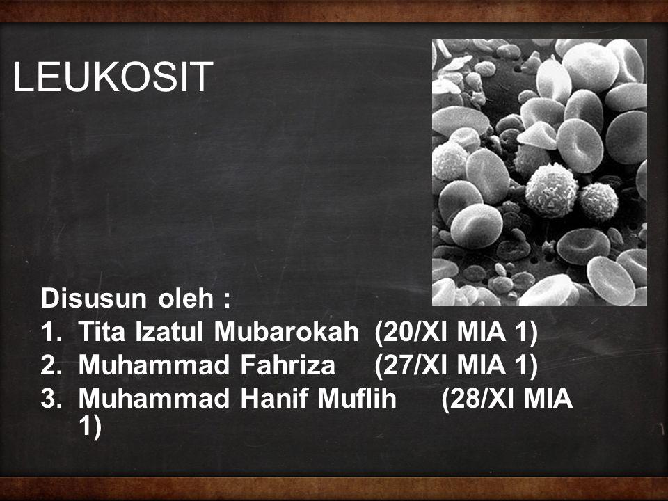 LEUKOSIT Disusun oleh : Tita Izatul Mubarokah (20/XI MIA 1)