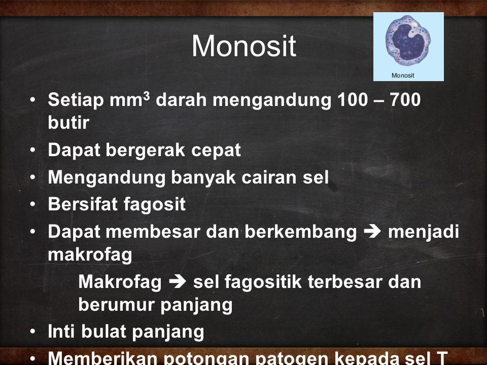 Monosit Setiap mm3 darah mengandung 100 – 700 butir