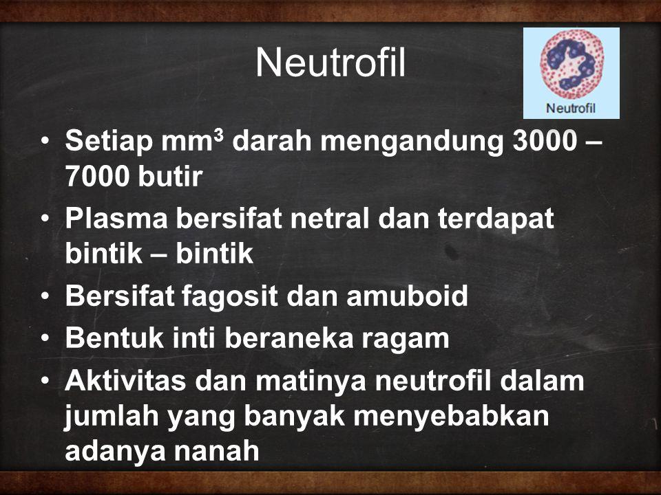 Neutrofil Setiap mm3 darah mengandung 3000 – 7000 butir