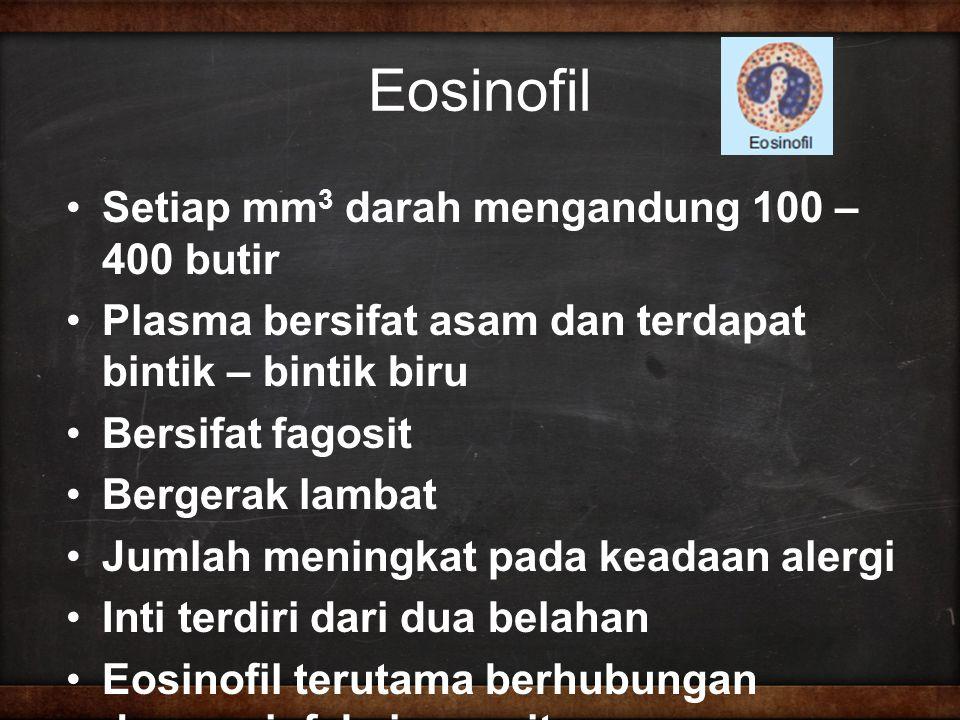 Eosinofil Setiap mm3 darah mengandung 100 – 400 butir