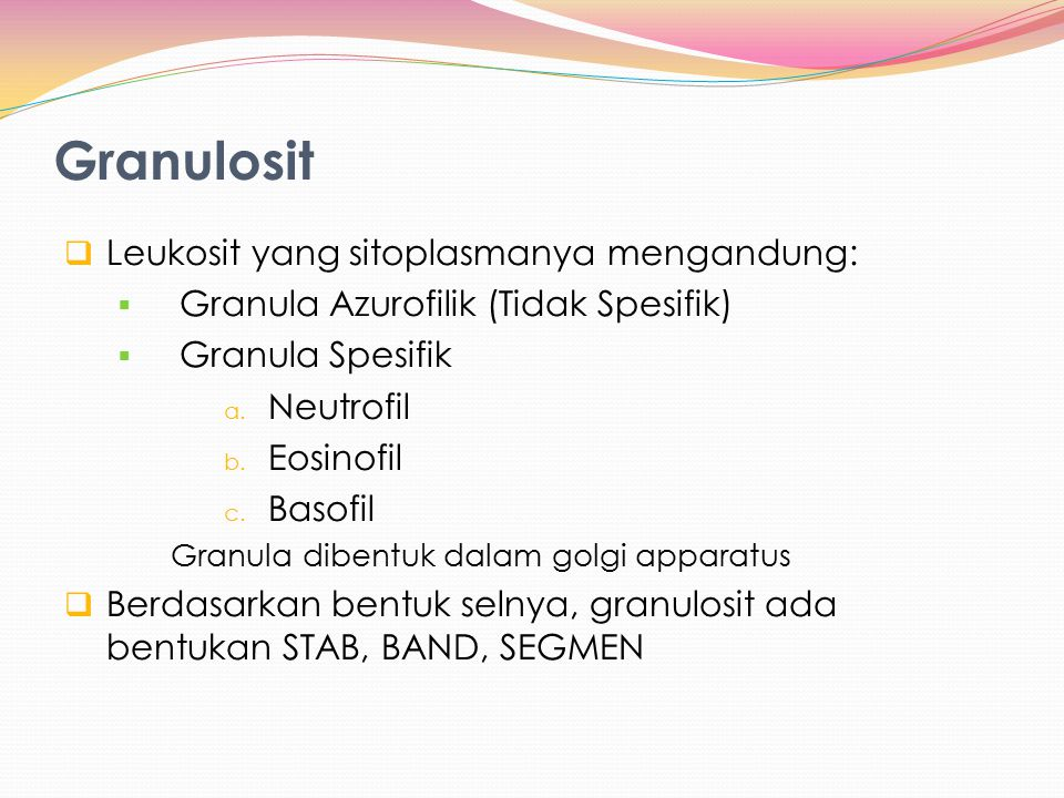 Granulosit Leukosit yang sitoplasmanya mengandung: