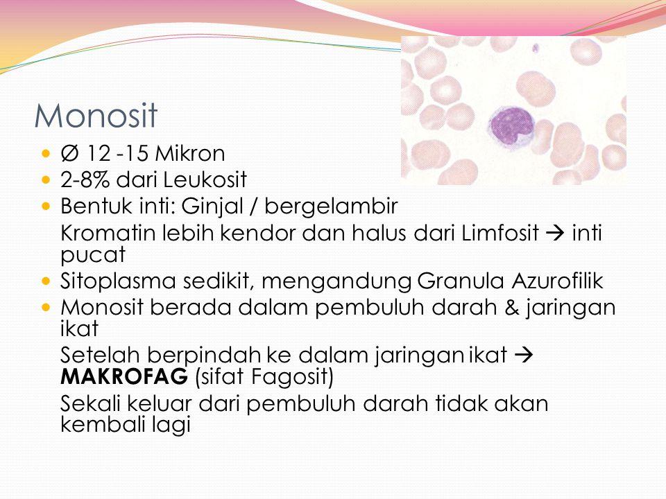 Monosit Ø 12 -15 Mikron 2-8% dari Leukosit