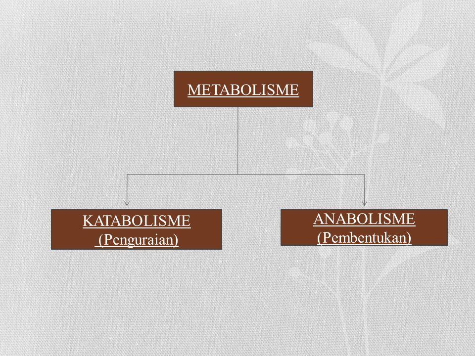 METABOLISME KATABOLISME ANABOLISME (Penguraian) (Pembentukan)