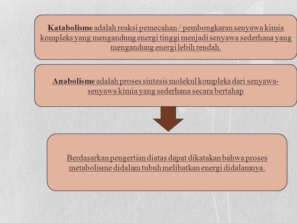 Katabolisme adalah reaksi pemecahan / pembongkaran senyawa kimia kompleks yang mengandung energi tinggi menjadi senyawa sederhana yang mengandung energi lebih rendah.