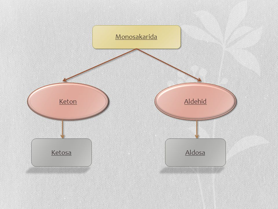 Monosakarida Keton Aldehid Ketosa Aldosa