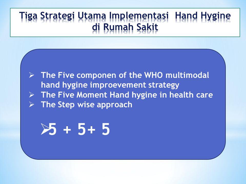 Tiga Strategi Utama Implementasi Hand Hygine di Rumah Sakit
