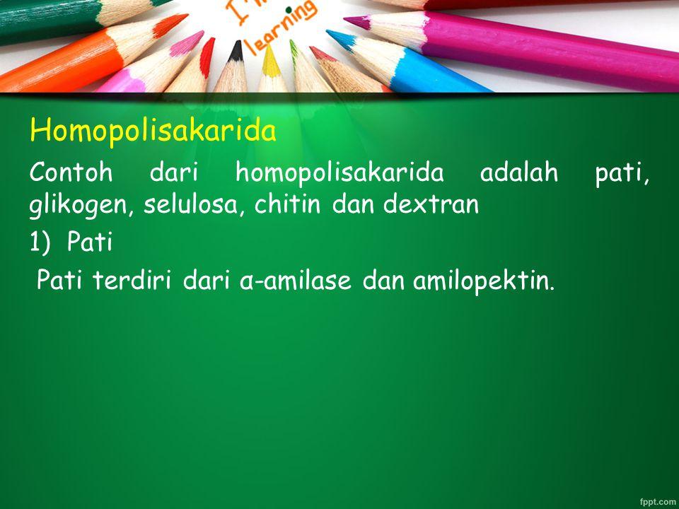 Homopolisakarida Contoh dari homopolisakarida adalah pati, glikogen, selulosa, chitin dan dextran. Pati.