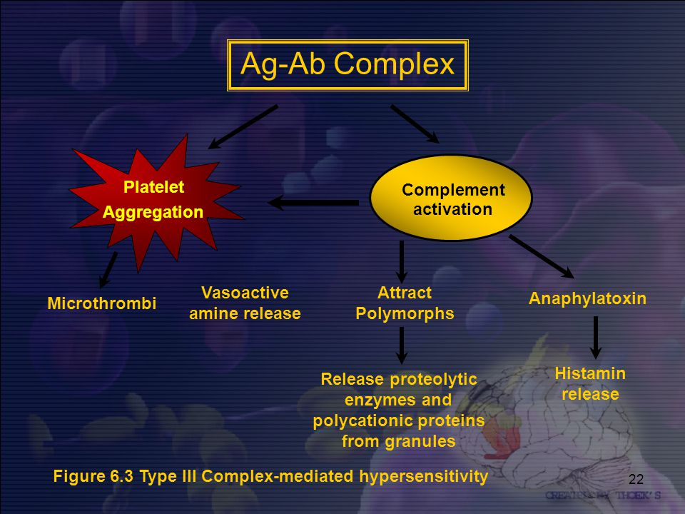Ag-Ab Complex Platelet Aggregation Complement activation