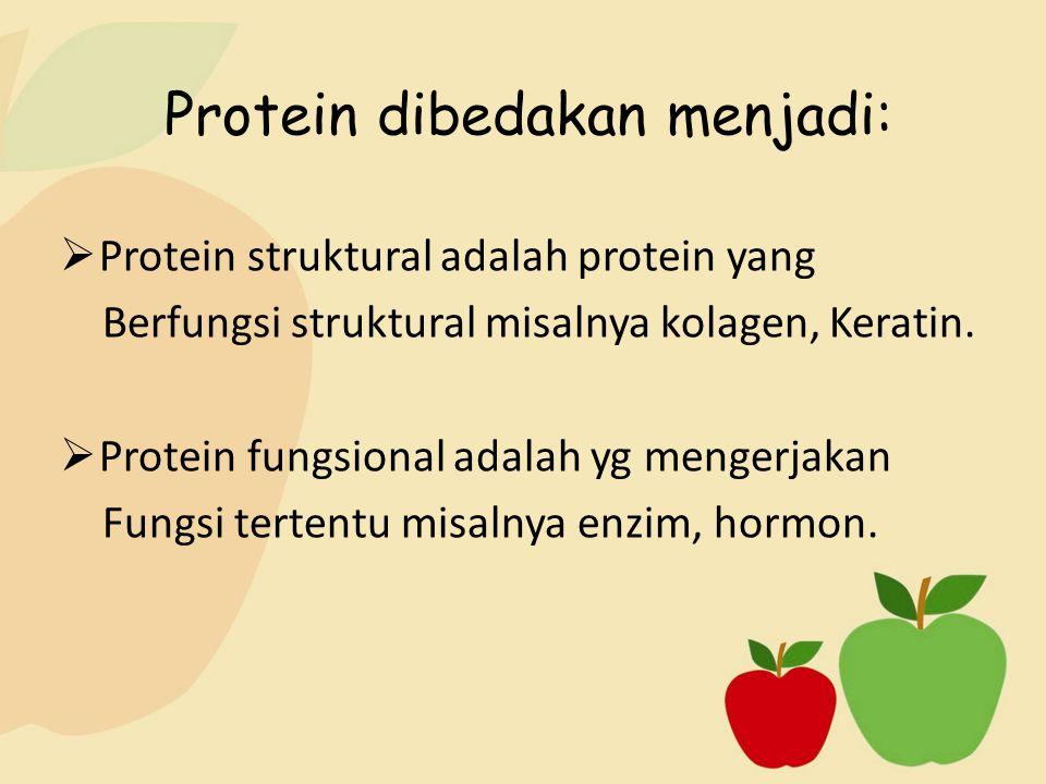 Protein dibedakan menjadi: