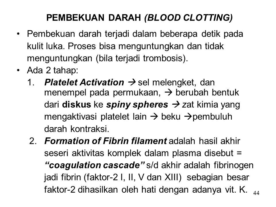 PEMBEKUAN DARAH (BLOOD CLOTTING)