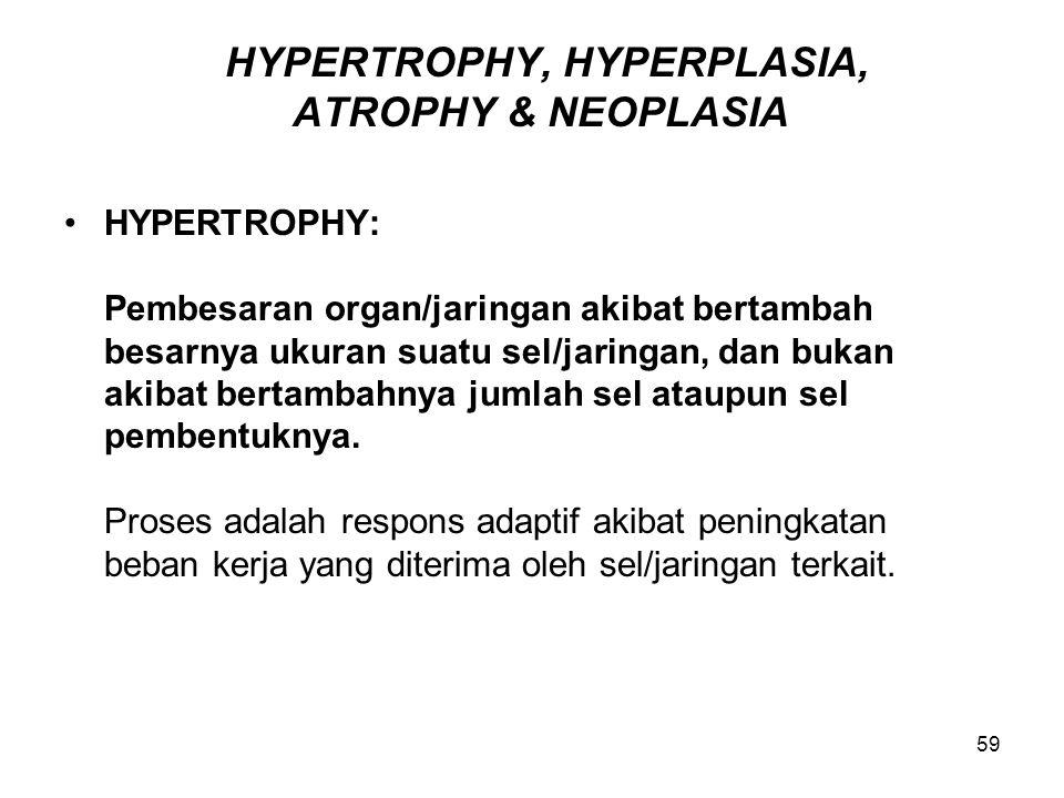 HYPERTROPHY, HYPERPLASIA, ATROPHY & NEOPLASIA
