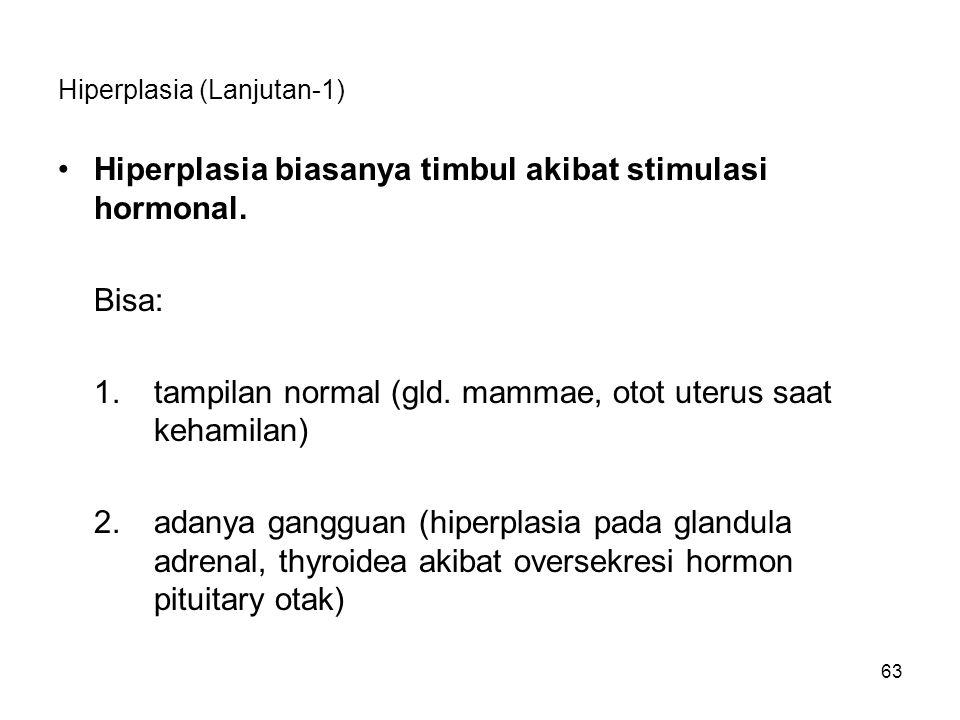 Hiperplasia (Lanjutan-1)