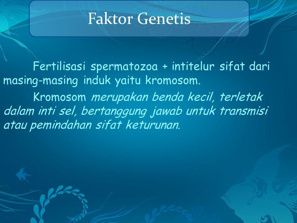 Faktor Genetis