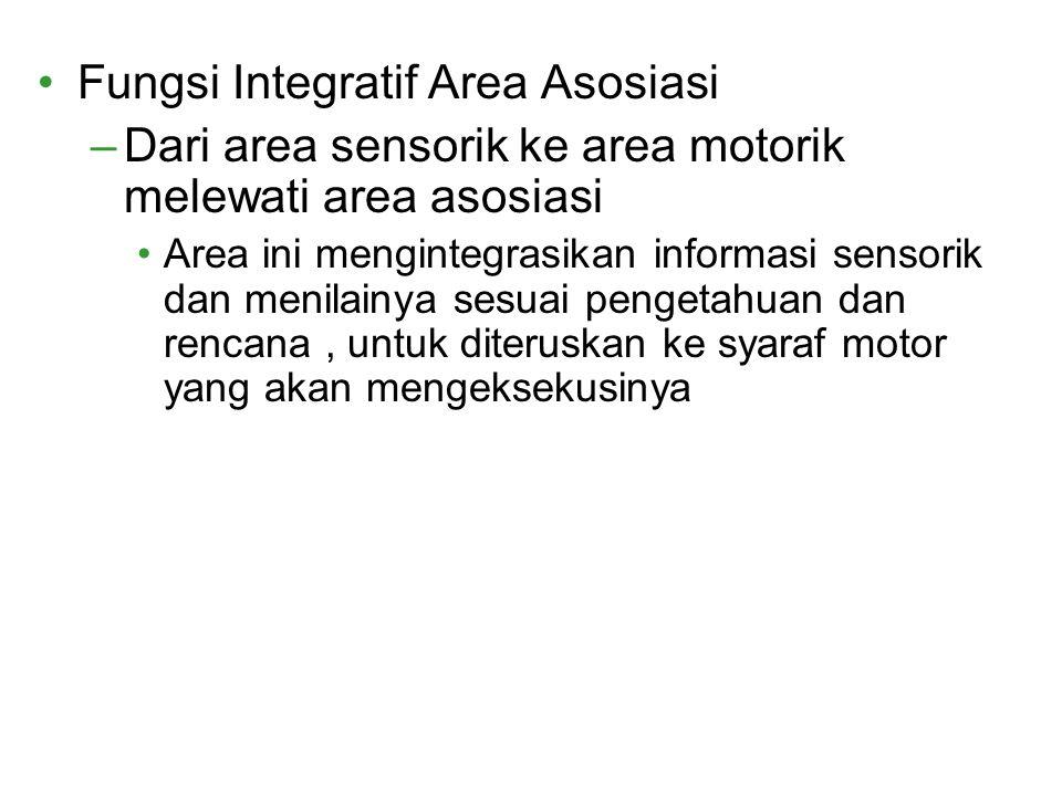 Fungsi Integratif Area Asosiasi