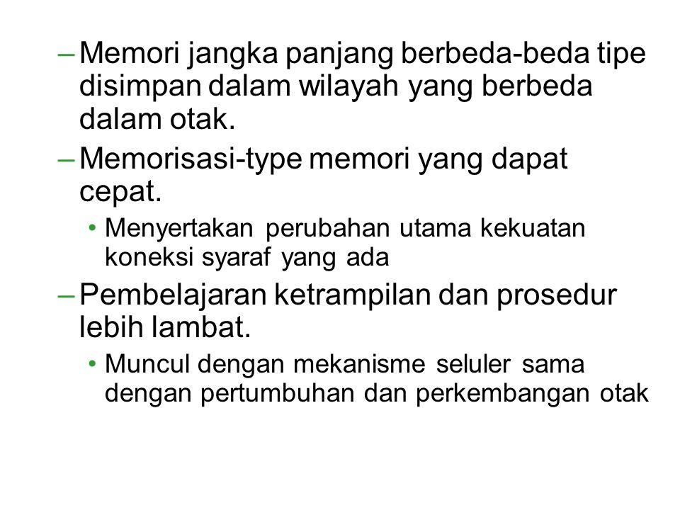 Memorisasi-type memori yang dapat cepat.