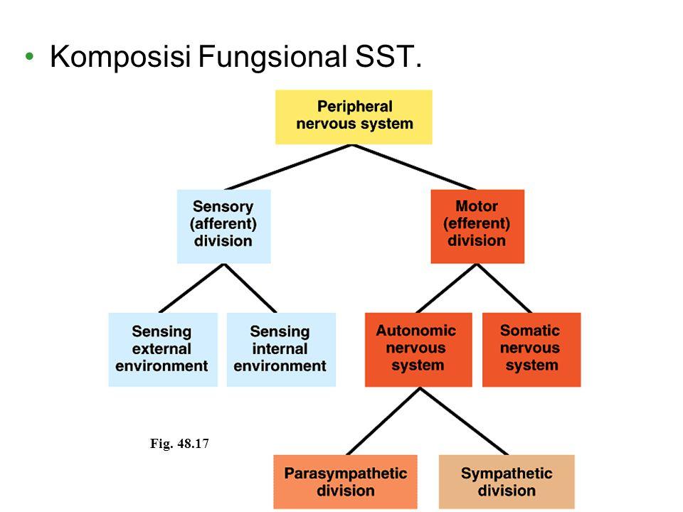Komposisi Fungsional SST.