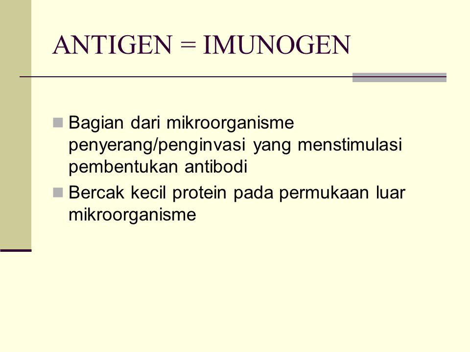 ANTIGEN = IMUNOGEN Bagian dari mikroorganisme penyerang/penginvasi yang menstimulasi pembentukan antibodi.