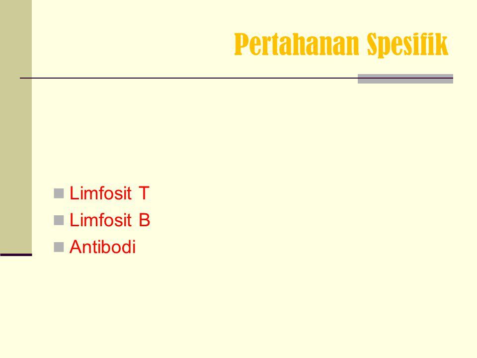 Pertahanan Spesifik Limfosit T Limfosit B Antibodi