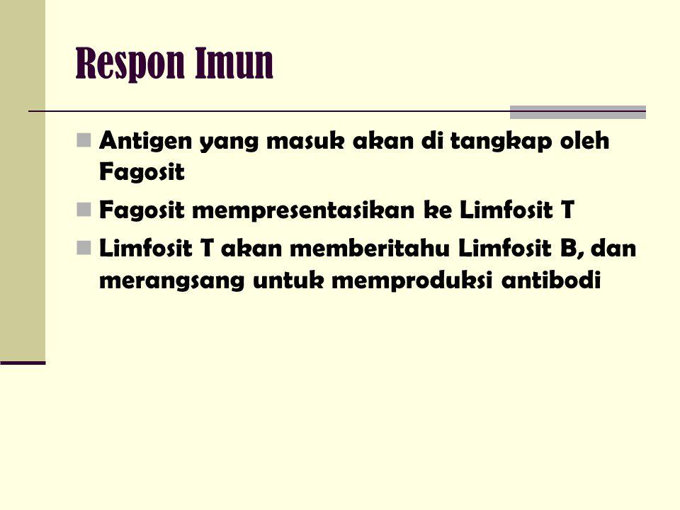 Respon Imun Antigen yang masuk akan di tangkap oleh Fagosit
