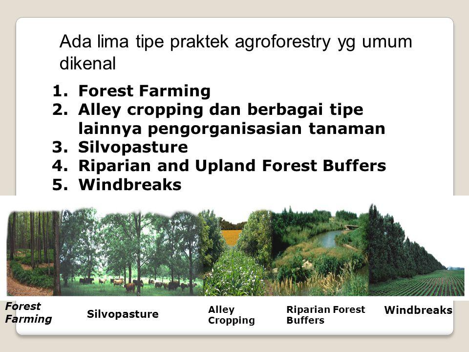 Ada lima tipe praktek agroforestry yg umum dikenal