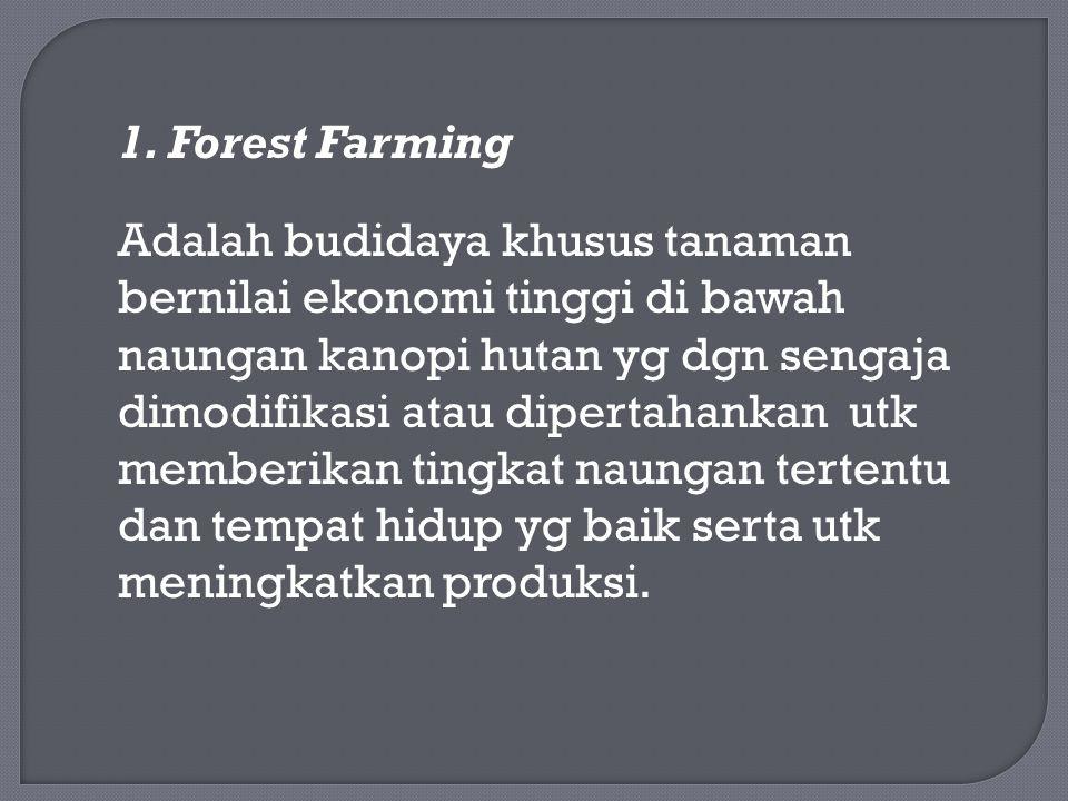 1. Forest Farming