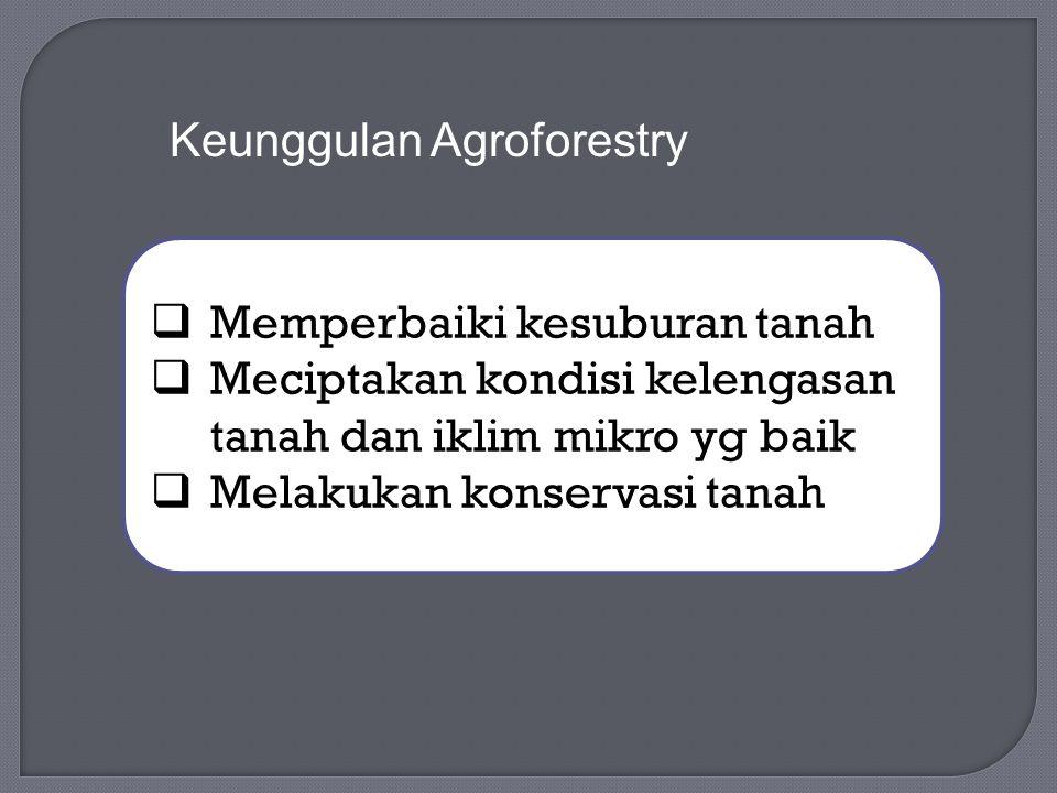 Keunggulan Agroforestry