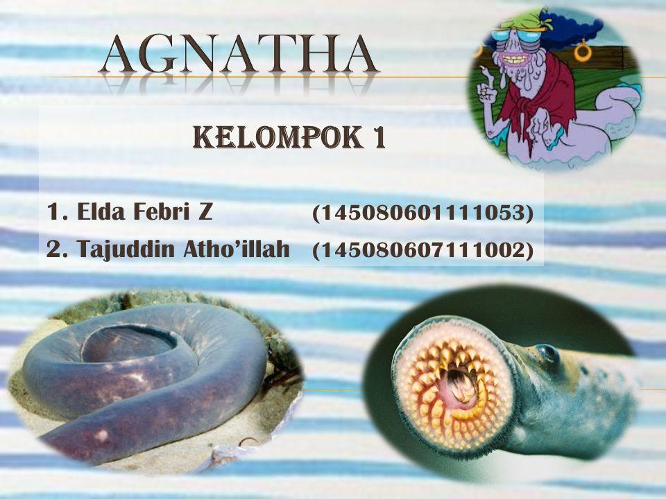 AGNATHA KELOMPOK 1 1. Elda Febri Z (145080601111053)