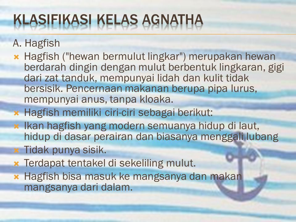 Klasifikasi kelas agnatha