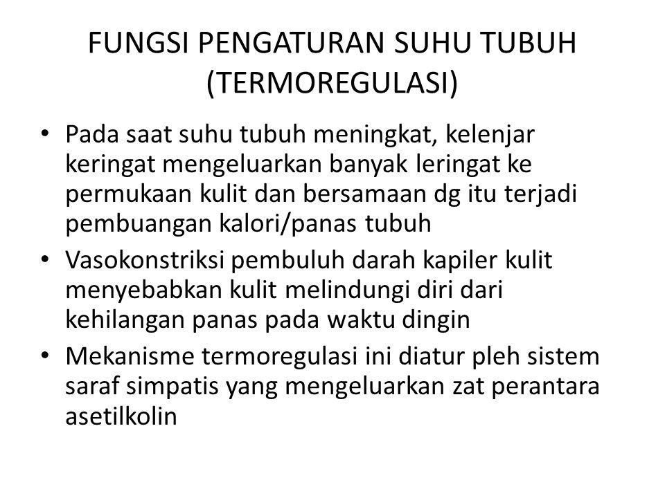 FUNGSI PENGATURAN SUHU TUBUH (TERMOREGULASI)
