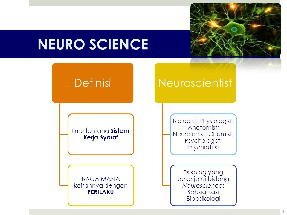 NEURO SCIENCE Definisi Neuroscientist
