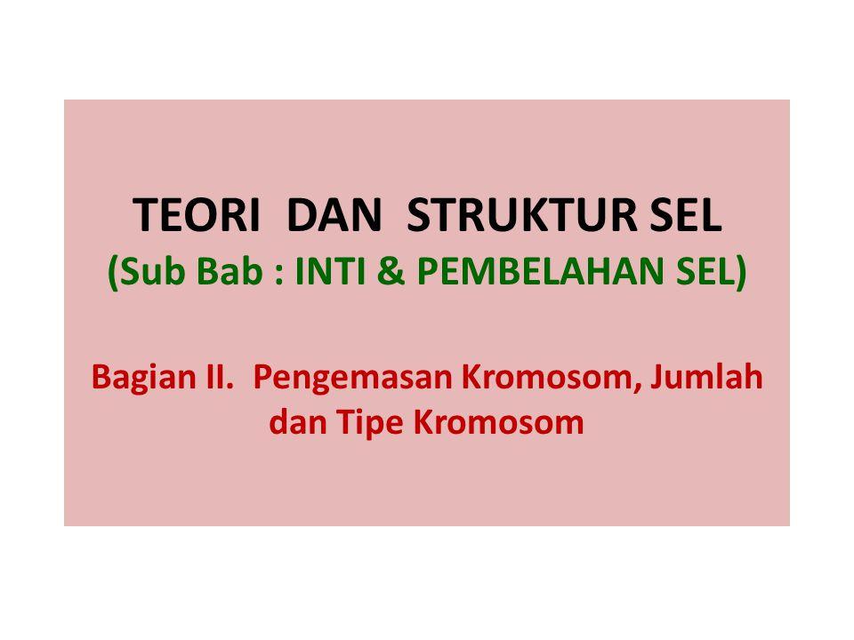 TEORI DAN STRUKTUR SEL (Sub Bab : INTI & PEMBELAHAN SEL) Bagian II