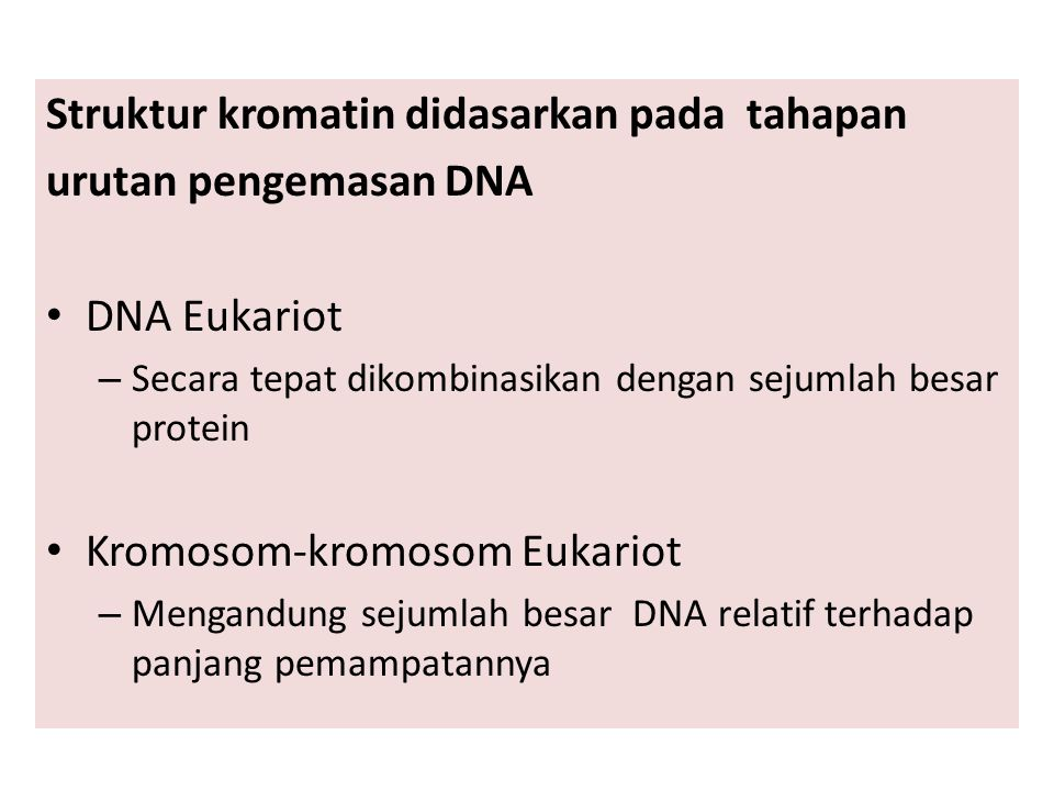 Struktur kromatin didasarkan pada tahapan urutan pengemasan DNA